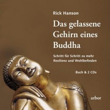 Das gelassene Gehirn eines Buddha